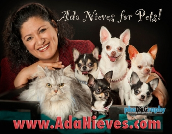 Ada Nieves, pet fashionista, will join Jon and Talkin' Pets 2/9/19 at 515pm ET to discuss New York's Fashion Pet Show