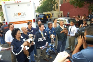ASPCA and NYPD Establish Groundbreaking Partnership that Vastly Expands Protections for New York City's Animals