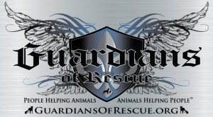 Celebrities Team Up with Guardians of Rescue to Help Animals in Need