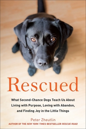 "Peter Zheutlin author of ""Rescued"" will join Jon and Talkin' Pets 1/06/18 at 5pm EST to discuss and give away his new book"