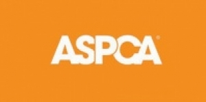 ASPCA Hosts Third Annual Adoption Event for Local Rescued Animals At Hampton Classic Horse Show