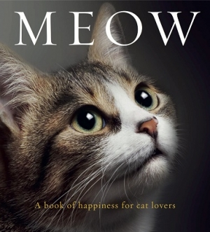 Author Anouska Jones once on Talkin' Pets with Jon Patch to discuss her book WOOF is back to talk about and give away her new book MEOW on 4/29/17 at 5pm EST