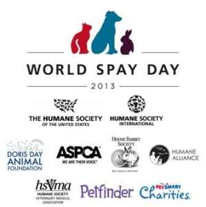 World Spay Day 2013 Launches Pet Pageant
