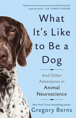Gregory Berns, author of What It's Like to be a Dog will join Jon and Talkin' Pets 10/14/17 at 5pm EST to discuss and give away his new book