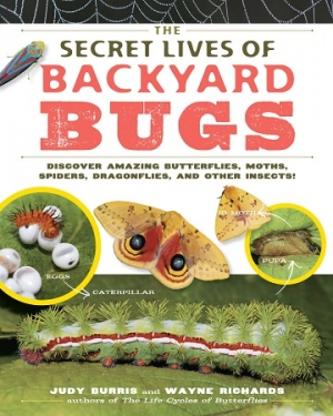 Judy Burris and Wayne Richards, authors of THE SECRETS OF BACKYARD BUGS will join Jon and Talkin' Pets 4/22/17 at 5pm EST to discuss and give away their book