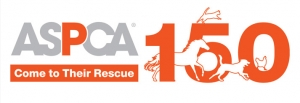 Actress Beth Behrs Joins the ASPCA to Raise Awareness About At-Risk Horses on ASPCA Help a Horse Day