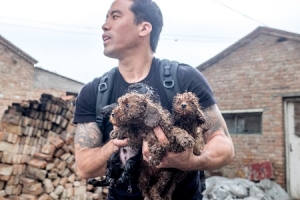 PetStaurant Owner and Founder of The Animal Hope and Wellness Foundation, Marc Ching, will join Jon and Talkin' Pets 5/21/16 at 5pm EST to discuss Japanese herbal and holistic nutrition for pets as well as his efforts to save animals