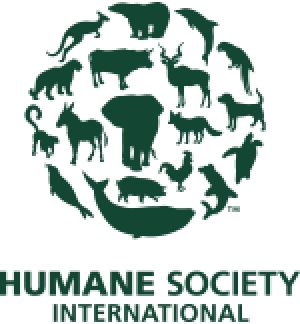 Humane Society International Pledges Long-term Help for Animals Affected by Nepal Earthquakes