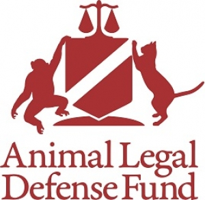 Lora Dunn, Director of the Criminal Justice Program for the ALDF will join Jon and Talkin' Pets tp dicuss the Best and Worst States in Animal Protection