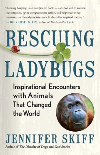 """Jennifer Skiff, Author of """"Rescuing Ladybugs"""" will join Jon and Talkin' Pets 9/01/18 at 5pm EST to discuss and give away her new book"""