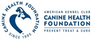 AKC Canine Health Foundation Raises More Than $500,000 Through Donor Challenge Program to Benefit Canine Health Research