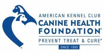 AKC Canine Health Foundation Honors Dr. Cynthia Otto with the 2021 Asa Mays, DVM Excellence in Canine Health Research Award