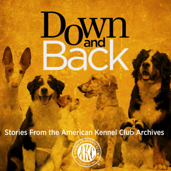 """AKC """"Down and Back"""" Podcast Returns"""