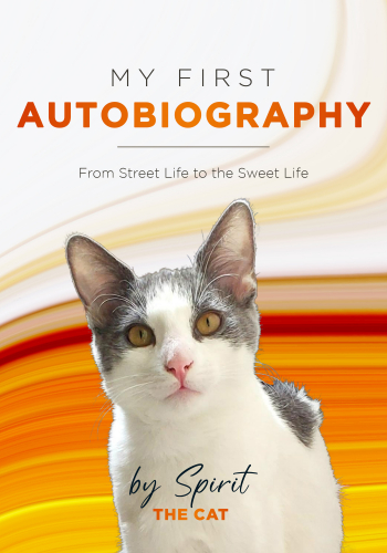 """Kac Young the parent of Spirit the Cat """"My First Autobiography from Street Life to the Sweet Life"""" will join Jon & Talkin' Pets 10/23/21 at 5pm ET to discuss & give away the book"""